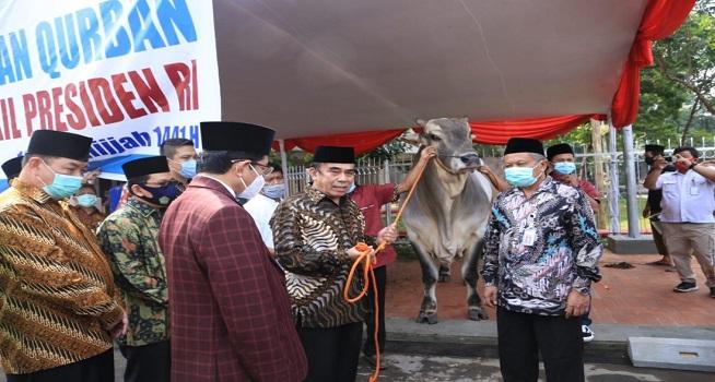 Menag Fachrul Razi menerima sapi kurban Presiden RI Joko Widodo seberat 1,88 ton (Foto: Rikie)
