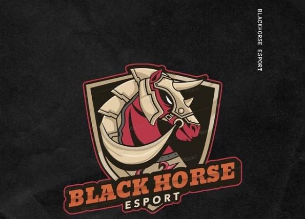 BlackHorse Esport, Salah Satu Esport Baru Asal Solo Yang Siap Bersaing