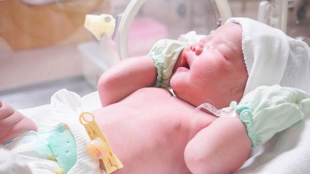 Tak Bikin Repot, Begini 7 Cara Merawat Bayi Baru Lahir